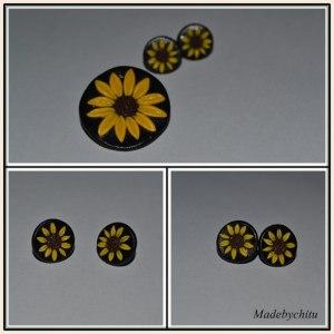 floarea soarelui p